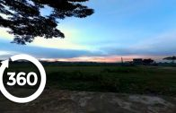 Cows on Commute at Dusk   Hanoi, Vietnam 360 VR Video   Discovery TRVLR