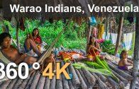 Warao Indians. Orinoco Delta, Venezuela. Aerial 360 video in 4K