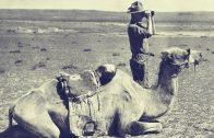 Fossil Hunting In the Gobi – Shelf Life 360