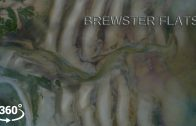 Brewster Flats | 360 VR & Drone | Cape Cod, Massachusetts