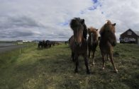 Iceland: A Virtual Journey in 360